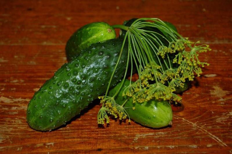 风寒感冒可以吃黄瓜吗风寒感冒禁忌什么食物