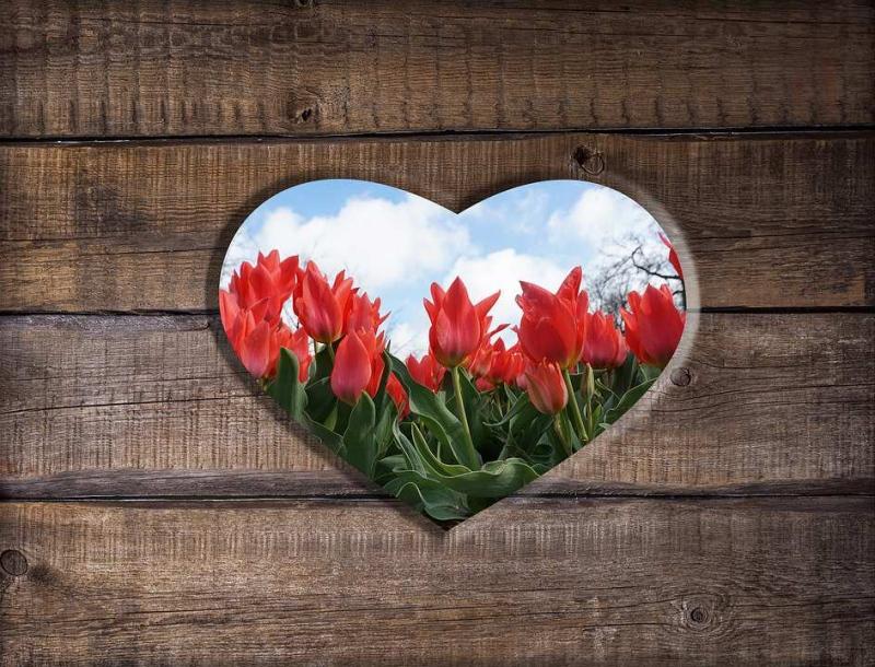 揭密找到人生目标有助于预防心脏病保护心脏还可以这样做